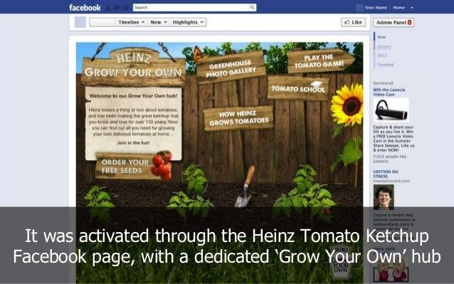 Heinz Case Study