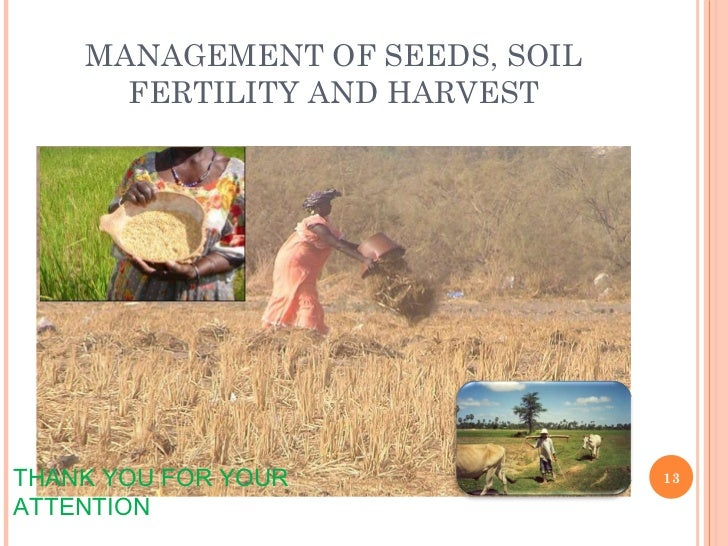 MANAGEMENT OF SEEDS, SOIL FERTILITY AND HARVEST THANK YOU FOR YOUR ATTENTION