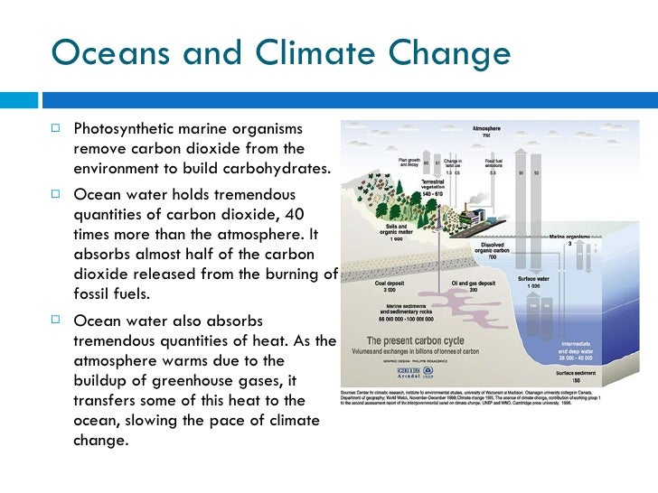 Oceans and Climate Change <ul><li>Photosynthetic marine organisms remove carbon dioxide from the environment to build carb...