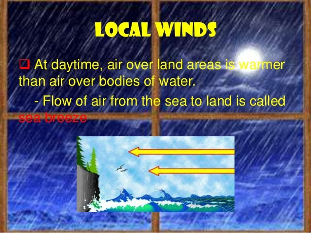 Wind system Doldrums Trade winds Horse latitudes Prevailing westerly winds and; Polar winds