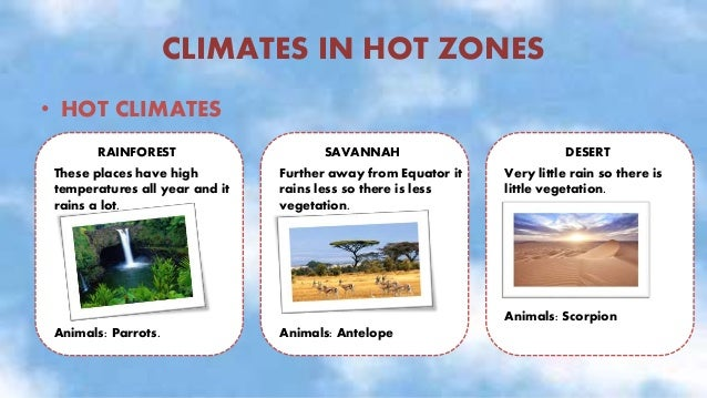 CLIMATES IN TEMPERATE ZONES • TEMPERATE CLIMATES: Between hot zones and cold zones. These climates vary: in some places it...