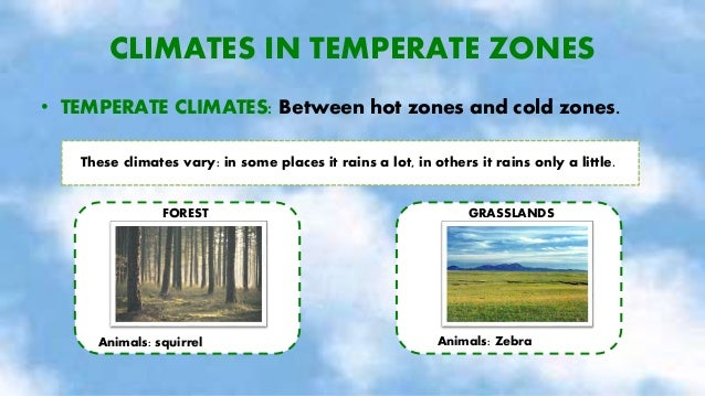 CLIMATES IN COLD ZONES • COLD CLIMATES: Near the North and the South Poles. It is cold all year. It rains very little, it ...