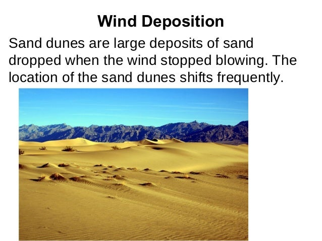 Wind DepositionSand dunes are large deposits of sanddropped when the wind stopped blowing. Thelocation of the sand dunes s...