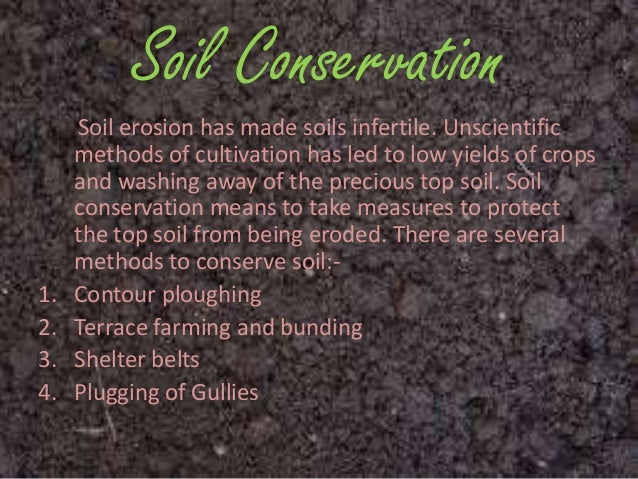 soil conservation information 10 incredible facts about dirt by the tern june 28 70,000 different types of soil in the us let us send you the latest in bird and conservation news.