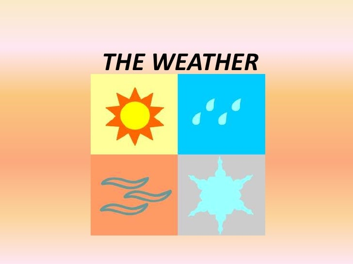 THE WEATHER<br />
