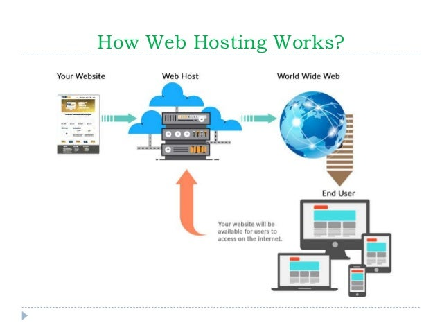 The Ultimate Guide to Web Hosting for Beginners