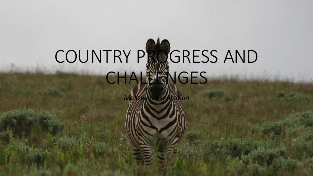 COUNTRY PROGRESS AND CHALLENGES Malawi presentation