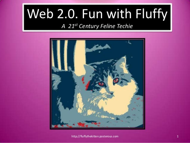 Web 2.0. Fun with Fluffy     A 21st Century Feline Techie        http://fluffythekitten.posterous.com   1