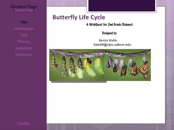 Student Page [Teacher Page]                  Butterfly Life Cycle     Title                              A WebQuest for 2n...