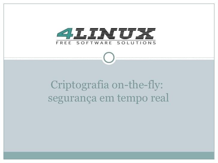 Criptografia on-the-fly:segurança em tempo real
