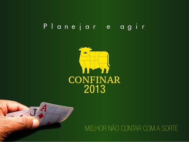 Planejar    e   agir      2013      MELHOR NÃO CONTAR COM A SORTE