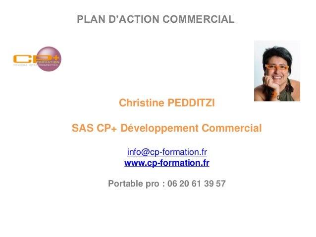 plan d action commercial pdf