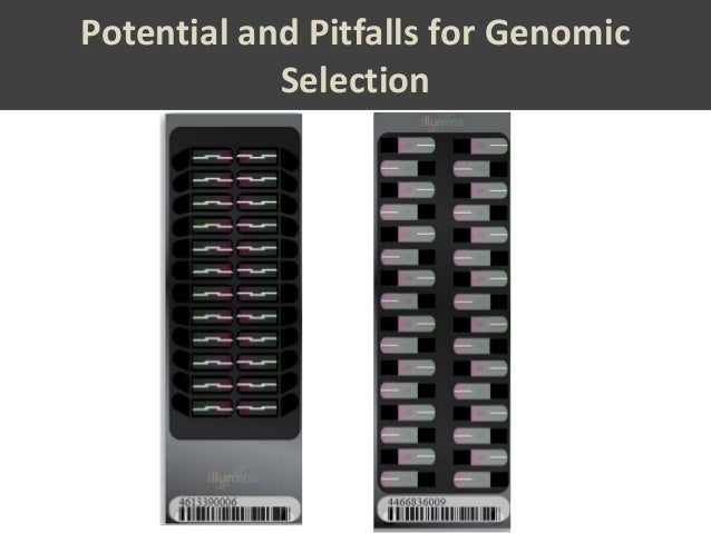Potential and Pitfalls for Genomic            Selection