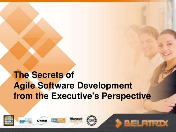 The Secrets ofAgile Software Developmentfrom the Executives Perspective