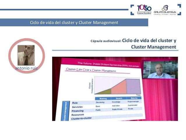 Mapa Funcional de servicios de apoyo  Rol principal en el Cluster  Grado de interés/  importancia relación  Muy Alto  Alto...
