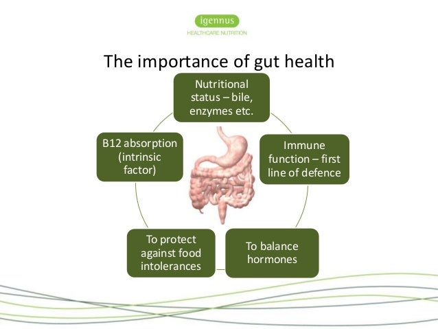 Nutritional Protocols For Gut Permeability With