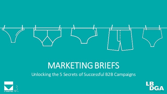 MARKETINGBRIEFS Unlocking the 5 Secrets of Successful B2B Campaigns