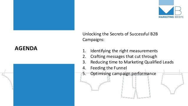 AGENDA Unlocking the Secrets of Successful B2B Campaigns: 1. Identifying the right measurements 2. Crafting messages that ...