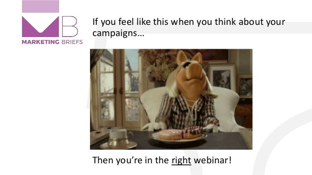 If you feel like this when you think about your campaigns… Then you're in the right webinar!