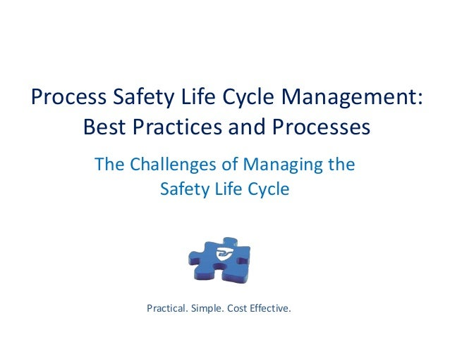 safety life cycle management in process The ibm®asset and plant lifecycle management  annual review of process safety, management docu-  as plants progress through several distinct life-cycle phases.