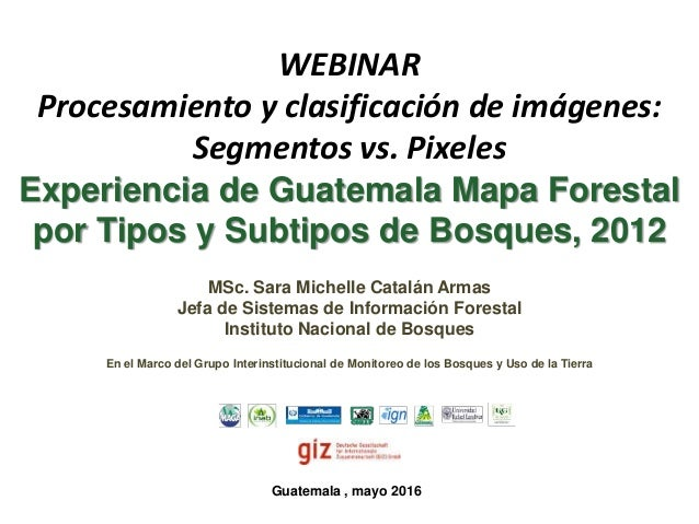 MSc. Sara Michelle Catalán Armas Jefa de Sistemas de Información Forestal Instituto Nacional de Bosques En el Marco del Gr...
