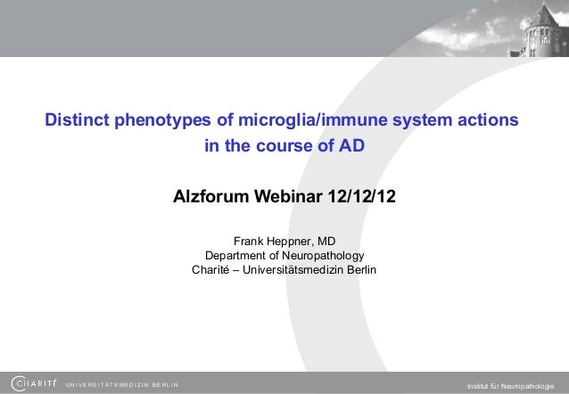 Distinct phenotypes of microglia/immune system actions                  in the course of AD                          Alzfo...