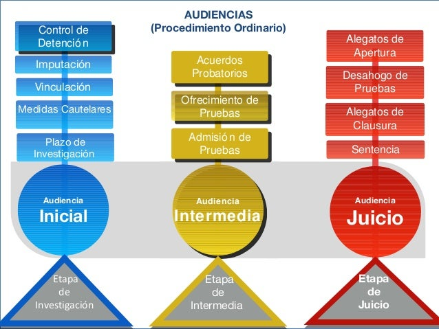 Audiencia inicial en el sistema penal acusatorio profesionalmente 14 ccuart Images