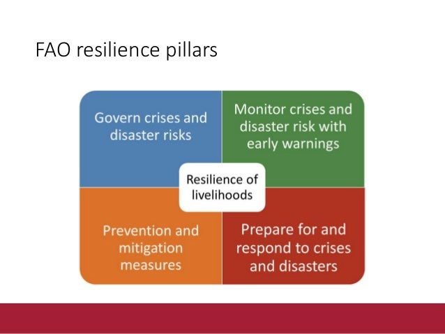Increase the resilience of livelihoods in the face of threats Risk Monitoring and Early Warning Emergency Preparedness Vul...
