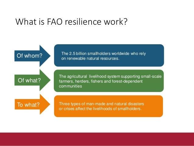 FAO resilience pillars