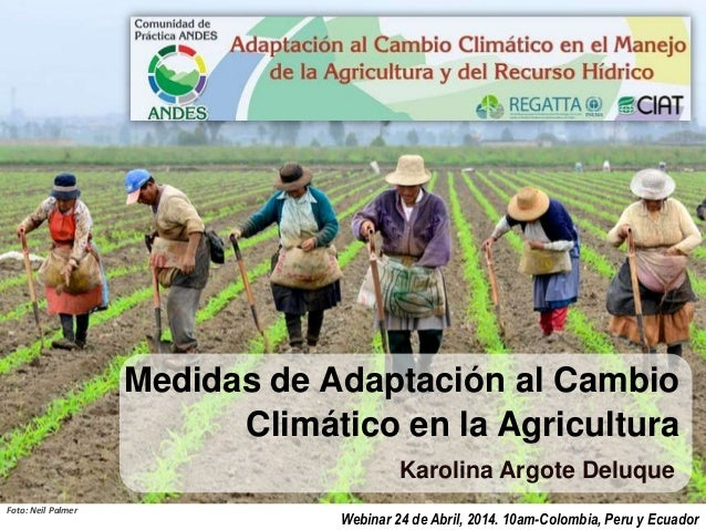 Medidas de Adaptación al Cambio Climático en la Agricultura Karolina Argote Deluque Webinar 24 de Abril, 2014. 10am-Colomb...