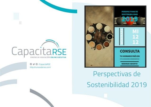 Perspectivas de Sostenibilidad 2019