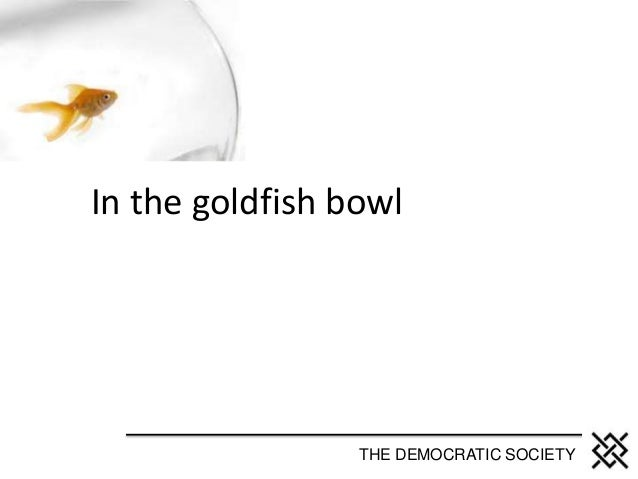 In the goldfish bowl THE DEMOCRATIC SOCIETY