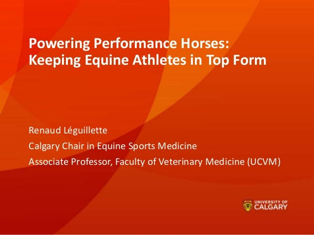 Powering Performance Horses: Keeping Equine Athletes in Top Form