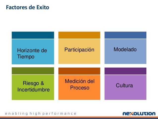 Factores de Exito Horizonte de Tiempo Participación Modelado Riesgo & Incertidumbre Cultura Medición del Proceso