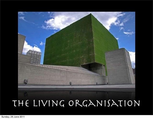 The Living organisation Sunday, 26 June 2011