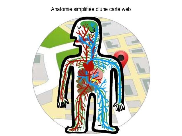 Anatomie simplifiée d'une carte web