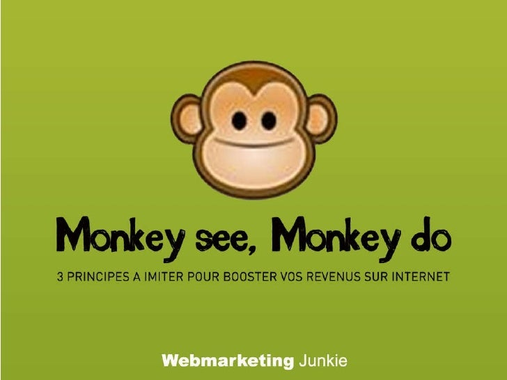 WEB MARKETING JUNKIE PDF DOWNLOAD