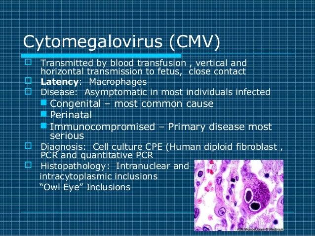 Virology Review