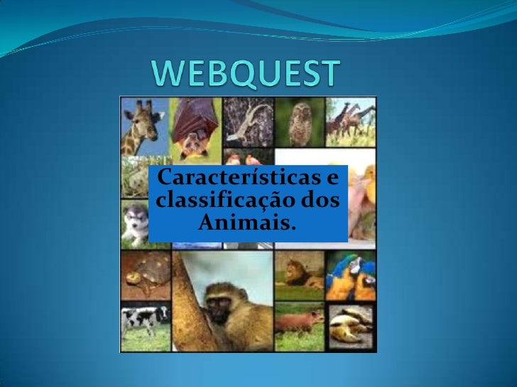 Características eclassificação dos    Animais.