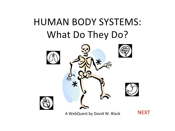 HUMAN BODY SYSTEMS: What Do They Do? NEXT A WebQuest by David W. Black