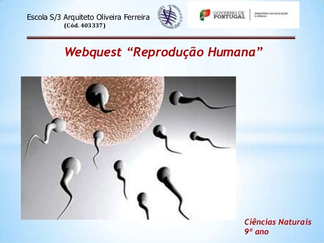 """Escola S/3 Arquiteto Oliveira Ferreira (Cód. 403337)  Webquest """"Reprodução Humana""""  Ciências Naturais 9º ano"""