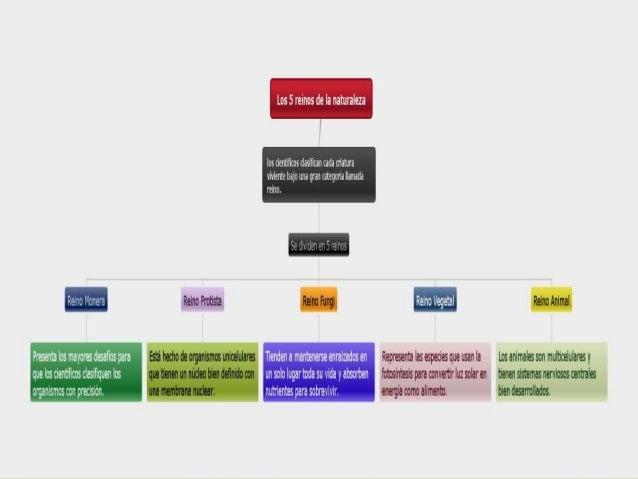 Webquest: Diversidad de los seres vivos  Slide 3