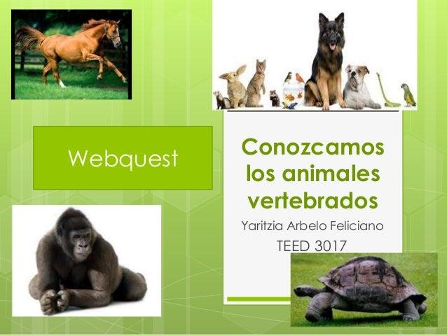 Conozcamos los animales vertebrados Yaritzia Arbelo Feliciano TEED 3017 Webquest