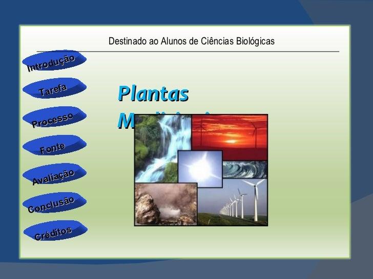 Introdução Avaliação Conclusão Tarefa Processo Fonte Créditos Plantas Medicinais Destinado ao Alunos de Ciências Biológicas