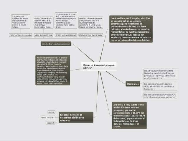 Webquest quispe anilu 1ºa Slide 3
