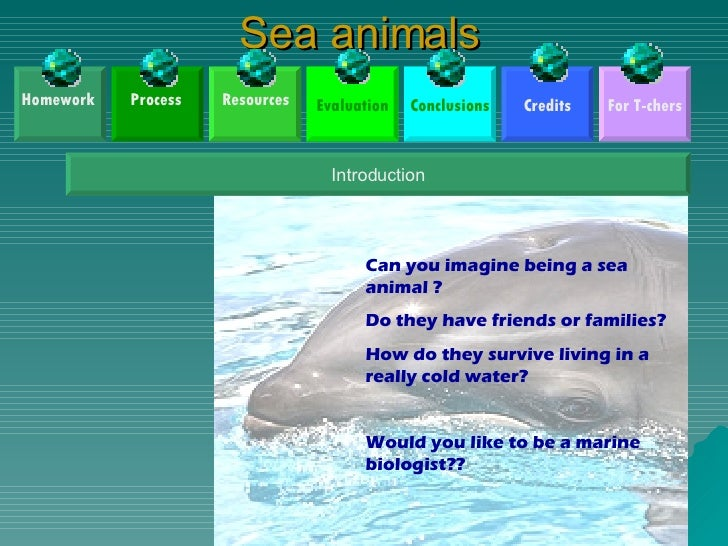 Sea animals Credits Conclusions Evaluation For T-chers Introduction Can you imagine being a sea animal ? Do they have frie...