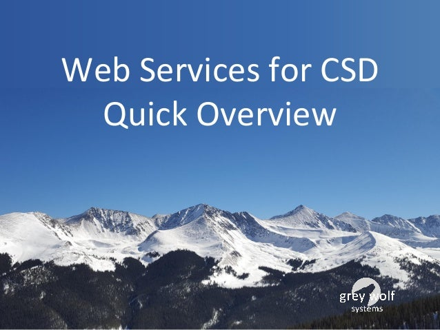 Web Services for CSD Quick Overview