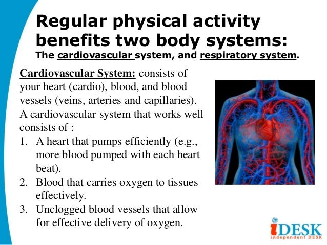 Benefits of Cardiovascular Exercise