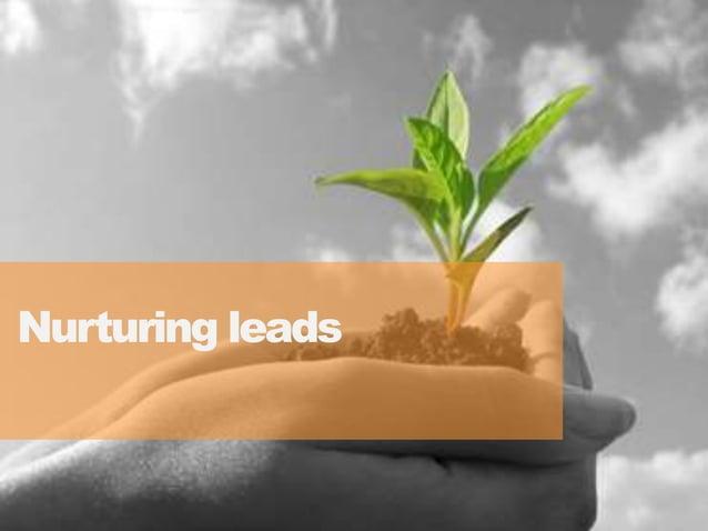 4242 Nurturing leads