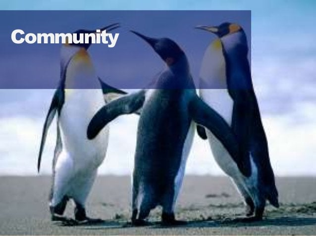5353 Community